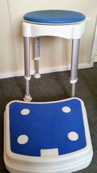 Shower seat and stand