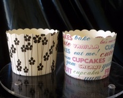Cupcake cases for sale